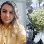İlk dəfə olaraq Azərbaycanda brokoli yetişdiriciliyi